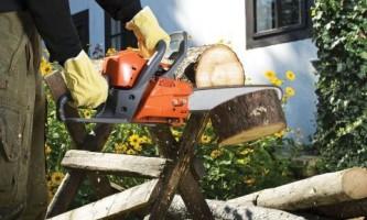 Що потрібно для осінньої прибирання в саду. Вибір інструмента