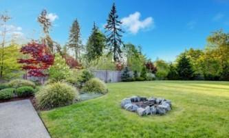 Як створити ідеальний газон на ділянці?