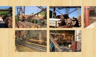 Хто будує дерев`яні будинки з оциліндрованих колод в новоросійську
