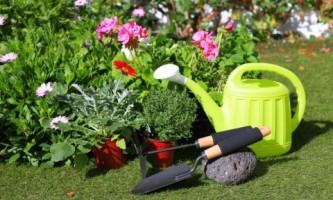 Зовсім ручної: вибираємо садові інструменти